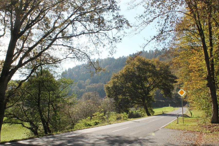 """Pierwsza """"słoneczna"""" droga we Francji"""